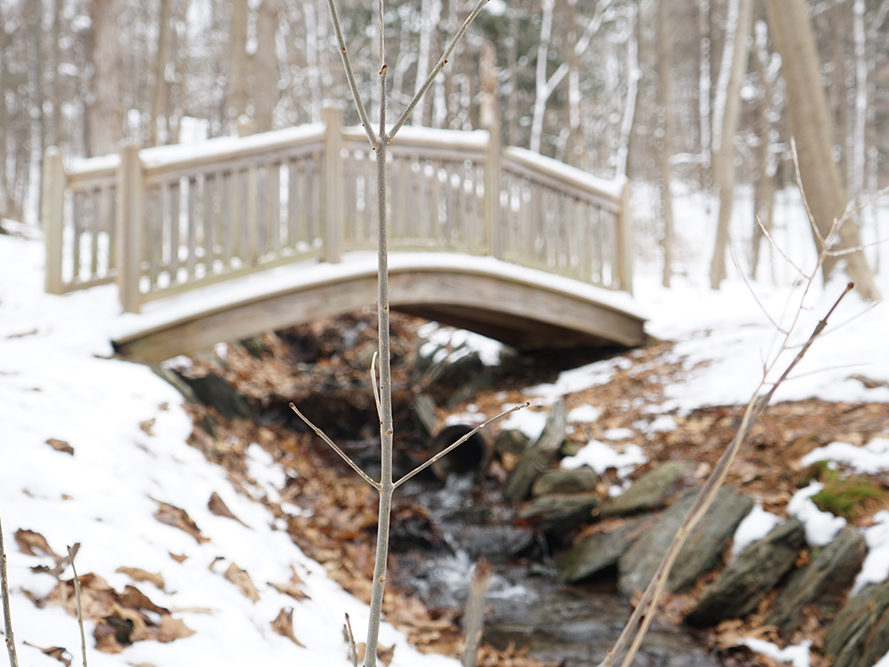 The Kripalu grounds are surrounded by many trails that are perfect for hikes and walks in nature.